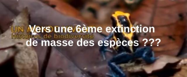 blogs/Terre/6ieme-extinction.jpg