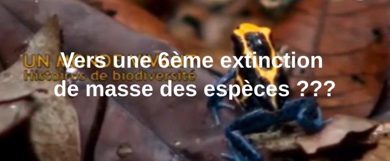 blogs/Terre/6ieme-extinction.jpg
